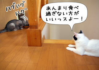 Shirokuro1106_5