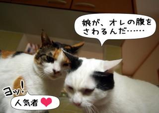 Shirokuro1106_8