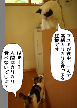 Shirokuro1107_6