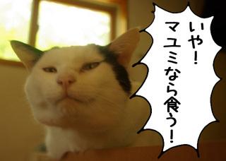 Shirokuro1107_7