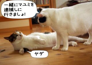 Shirokuro1107_8