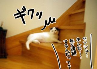 Shirokuro1107_9
