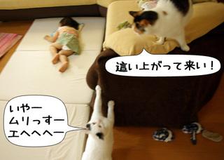 Shirokuro1108_2