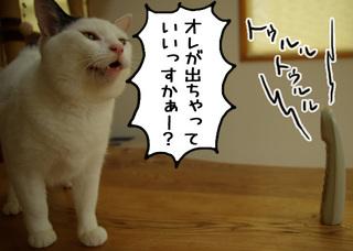 Shirokuro1108_7