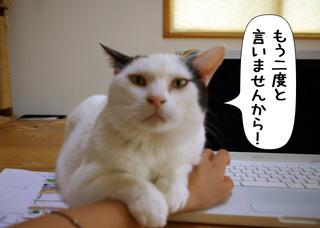 Shirokuro1108_8_2