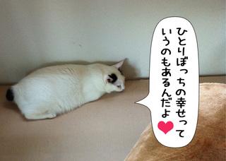 Shirokuro1109_1