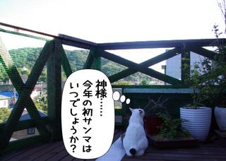 Shirokuro1110_11