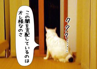 Shirokuro1110_2