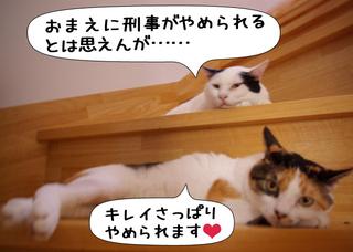 Shirokuro1110_3