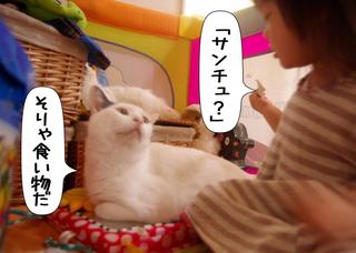 Shirokuro1110_4