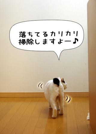 Shirokuro1111_2