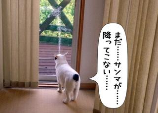Shirokuro1111_8
