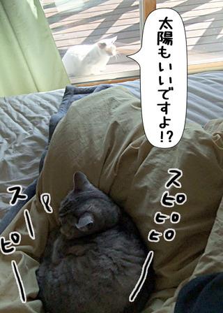 Shirokuro1201_10