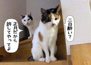 Shirokuro1201_2