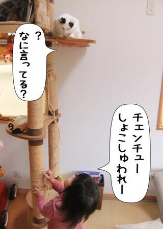 Shirokuro1201_5