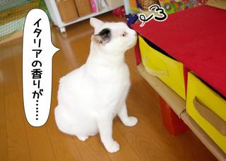 Shirokuro1201_8