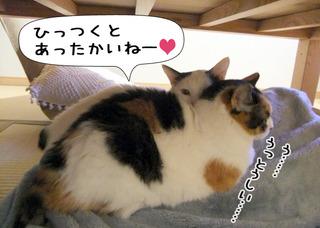 Shirokuro1202_2