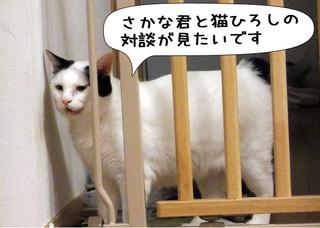 Shirokuro1203_1