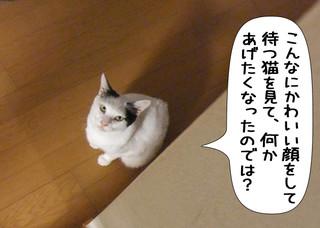 Shirokuro1203_2