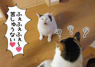 Shirokuro1203_3
