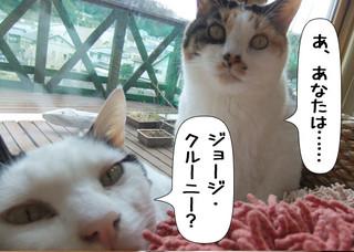 Shirokuro1203_4