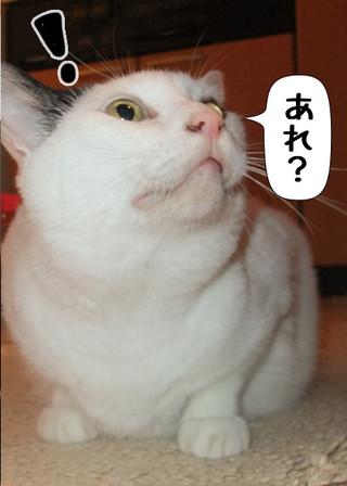 Shirokuro1203_6