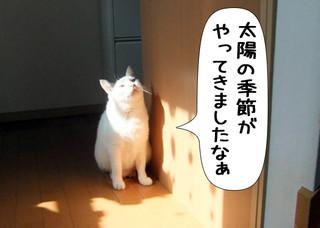 Shirokuro1204_2