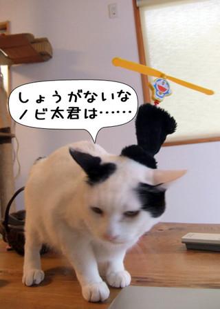 Shirokuro1204_3