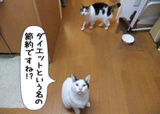 Shirokuro1204_4
