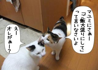 Shirokuro1204_5