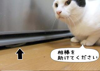 Shirokuro1204_6