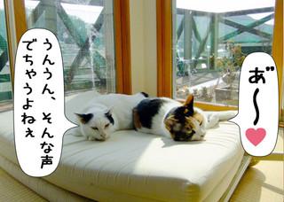 Shirokuro1204_7