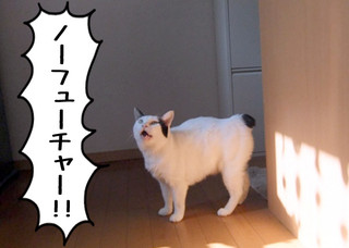 Shirokuro1204_9