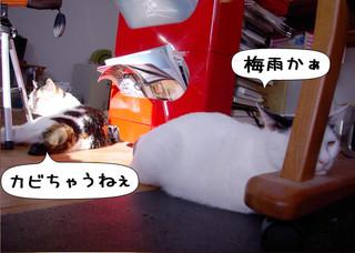 Shirokuro1205_10