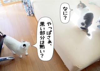 Shirokuro1205_2
