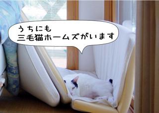 Shirokuro1205_9