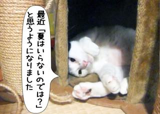Shirokuro1206_9