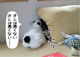 Shirokuro1207_1