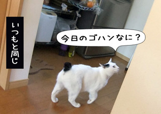 Shirokuro1207_3