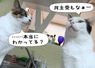 Shirokuro1207_6