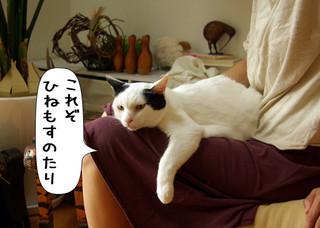 Shirokuro1208_6