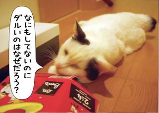 Shirokuro1209_11