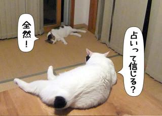 Shirokuro1209_5