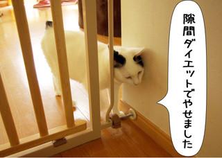 Shirokuro1210_1_2