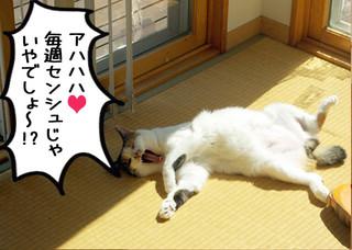 Shirokuro1210_8