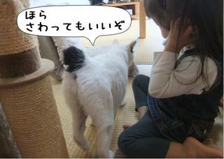 Shirokuro1211_1