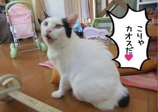 Shirokuro1211_3