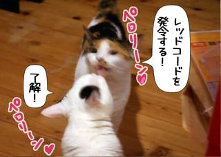 Shirokuro1211_5