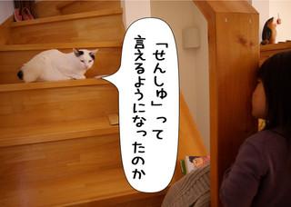 Shirokuro1212_1