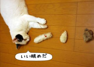 Shirokuro1212_2